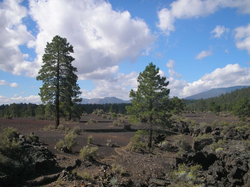 sunset crater park arizona.jpg