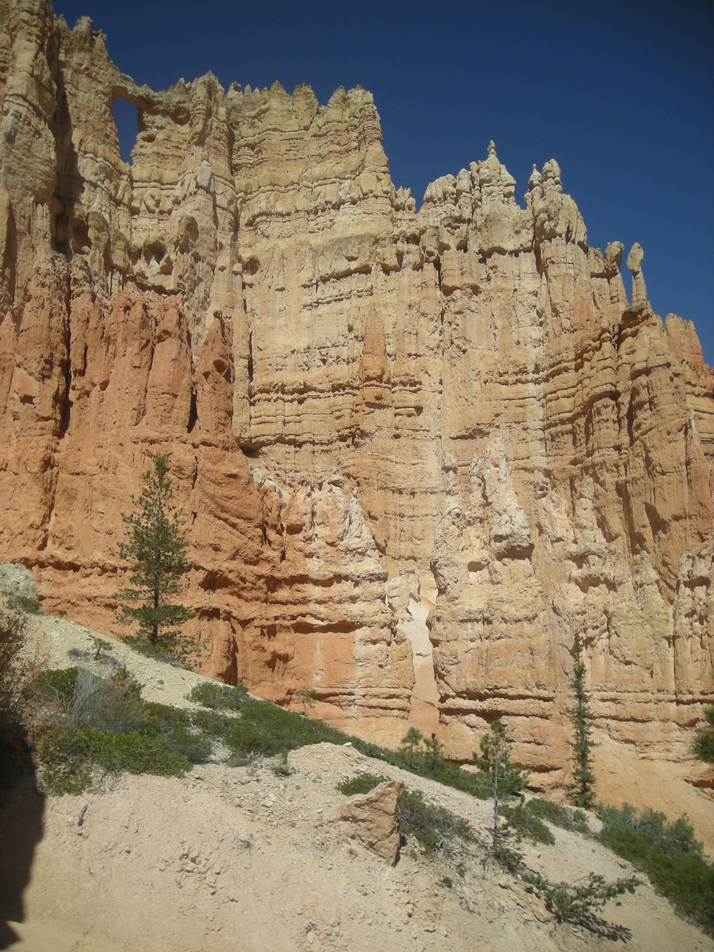 below the hoodoos.jpg