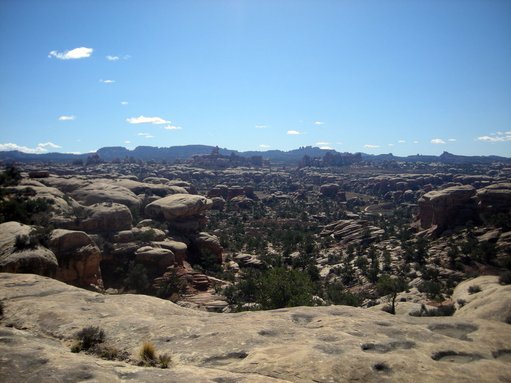 Needles section of Canyonlands.jpg
