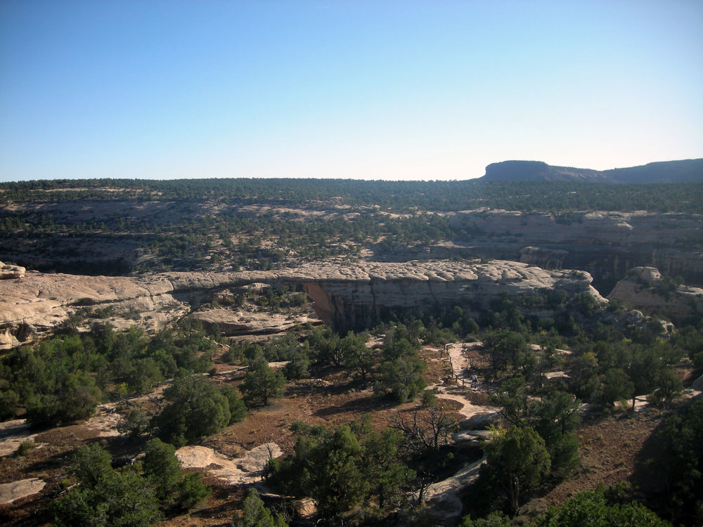 Natural Bridges National Monument.jpg