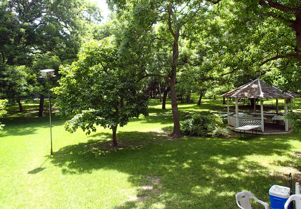 backyard at river house.jpg