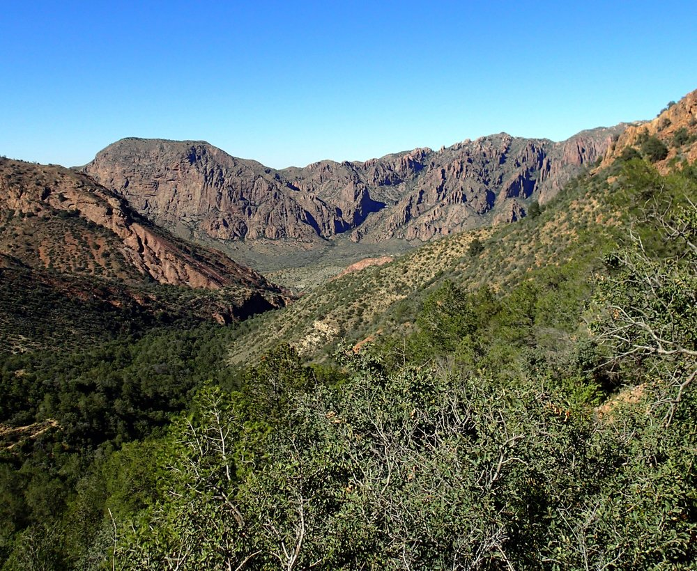 Chisos Basin 10-25-15.jpg