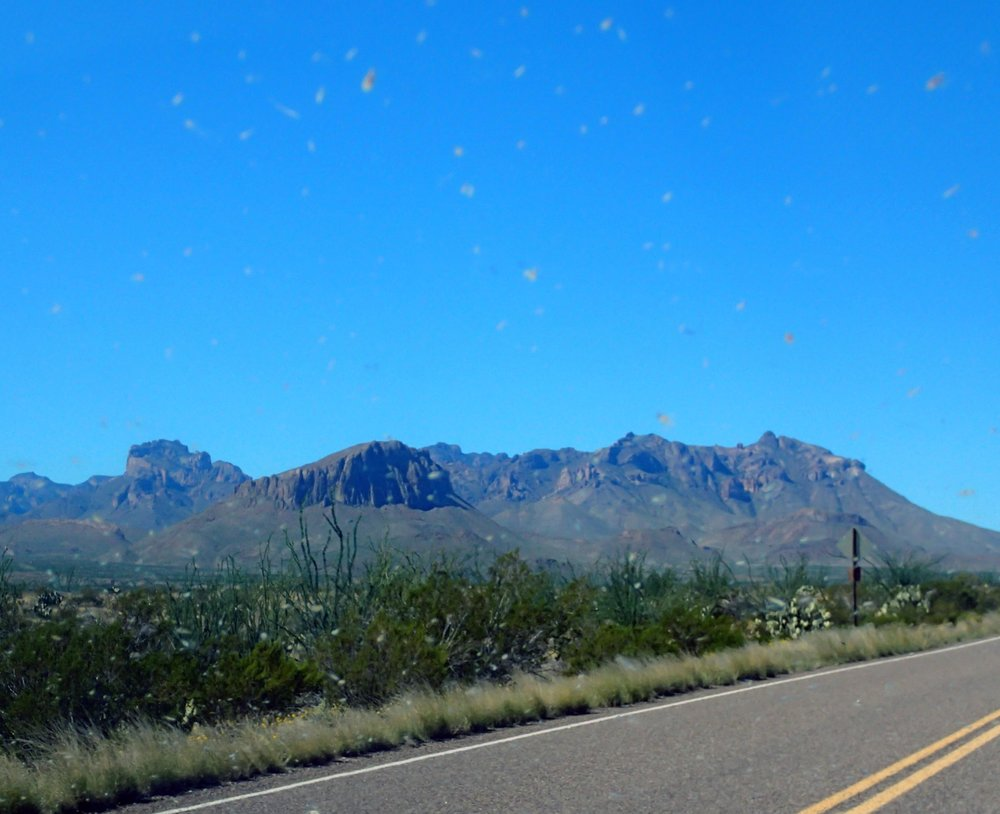 Chisos from the car.jpg