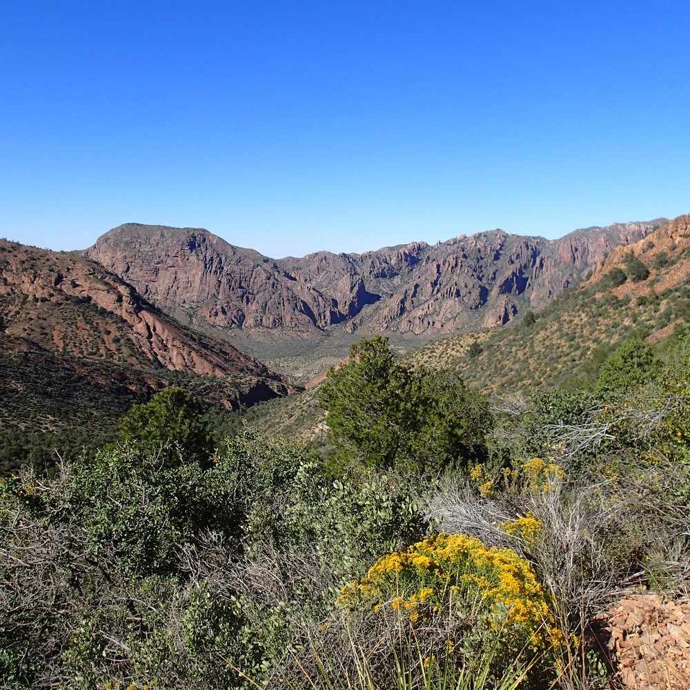 first day in the Chisos.jpg