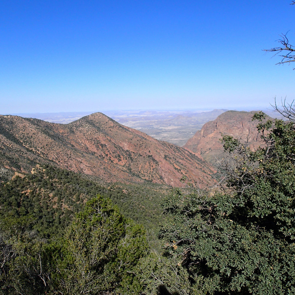 last day in the Chisos.jpg