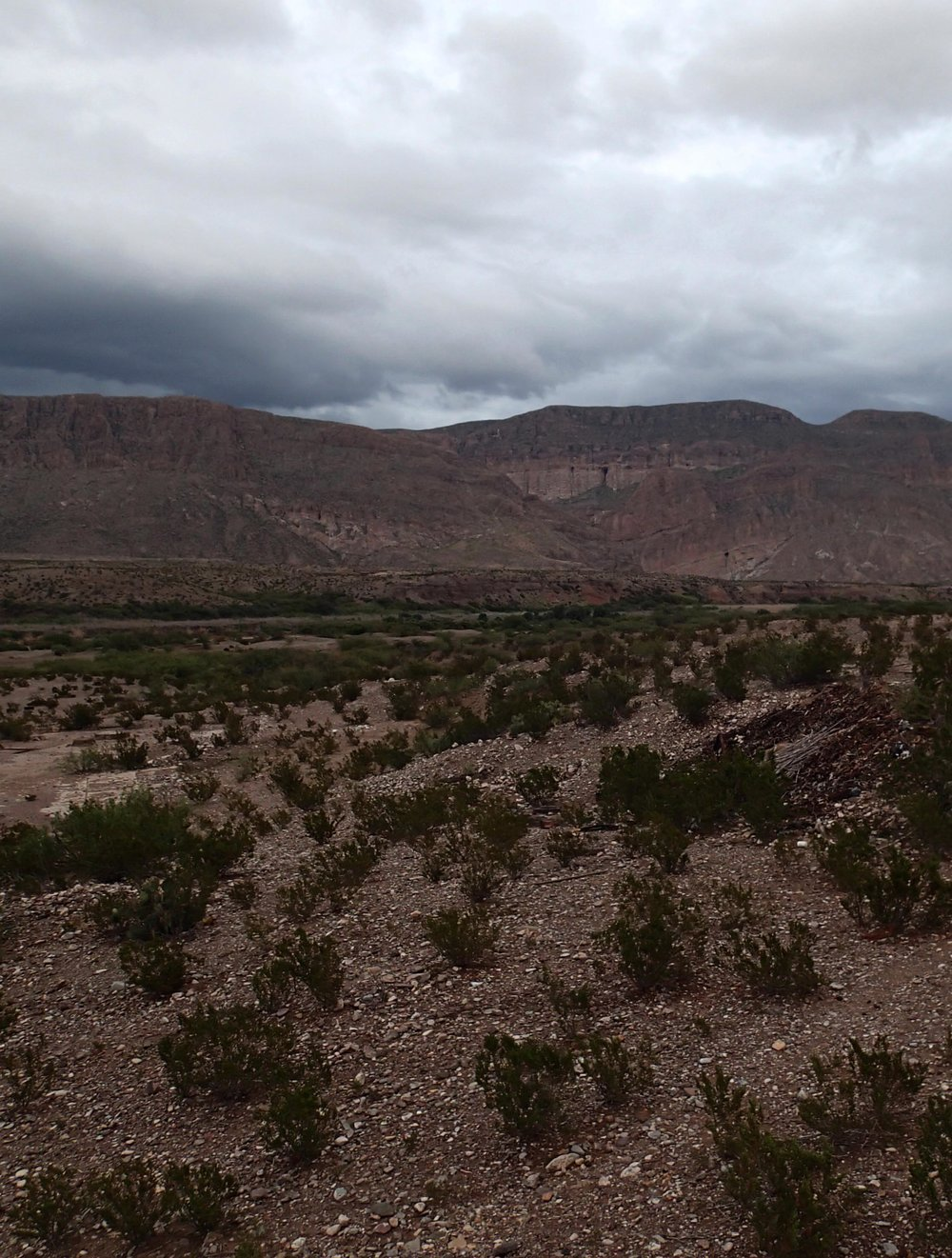 Sierra del Carmen.jpg
