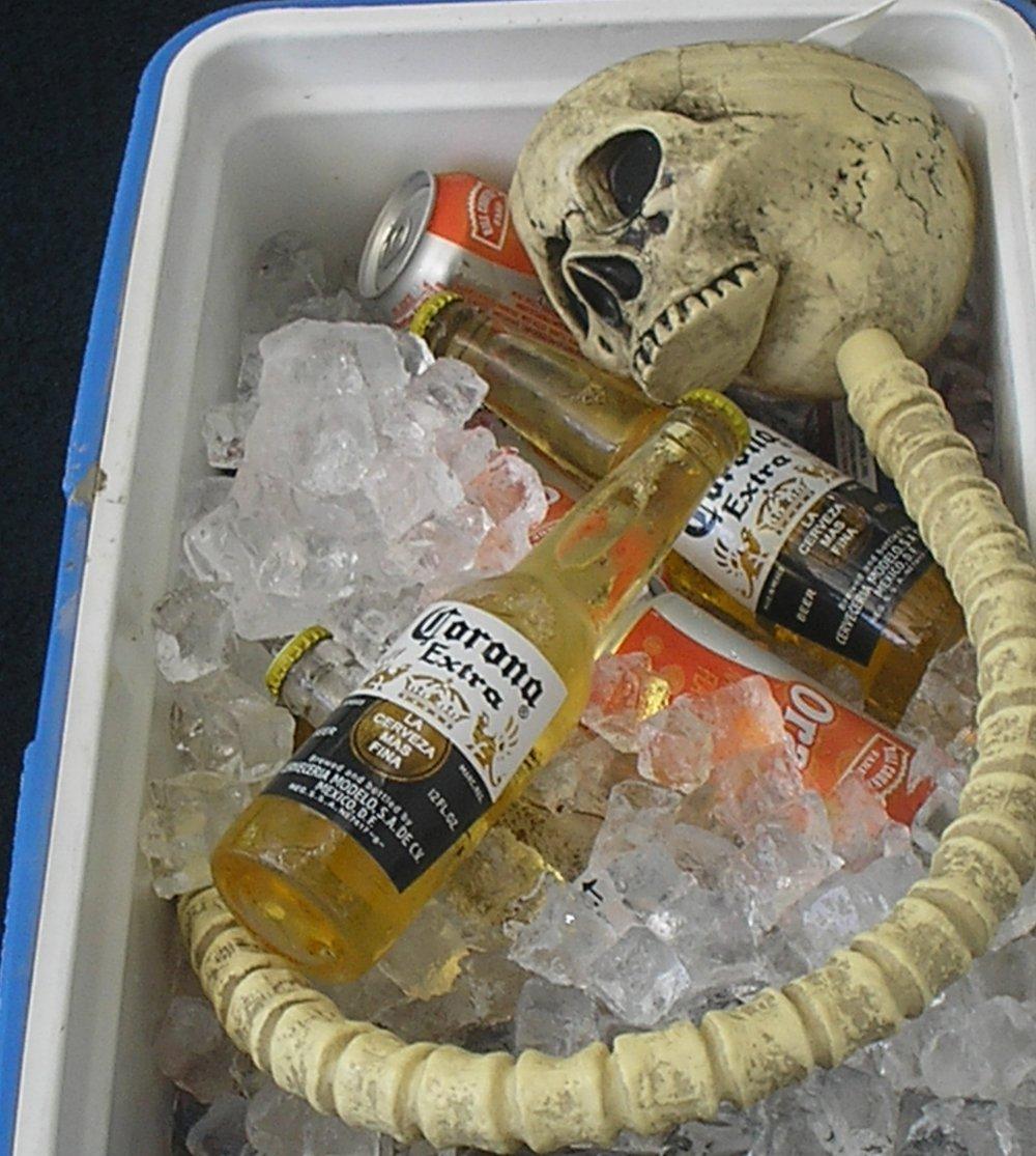 skully chillin.jpg