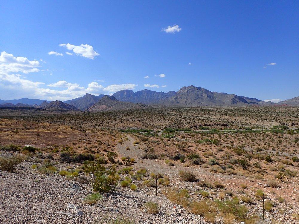 Mohave Desert.jpg