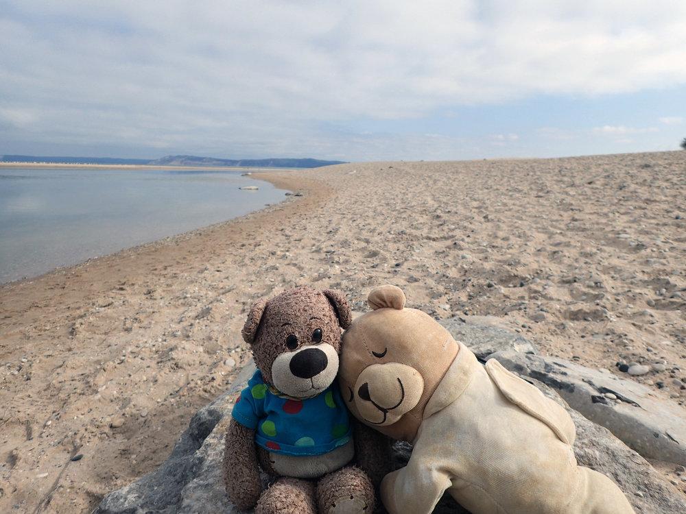 Bearbies at Platte River Beach.jpg