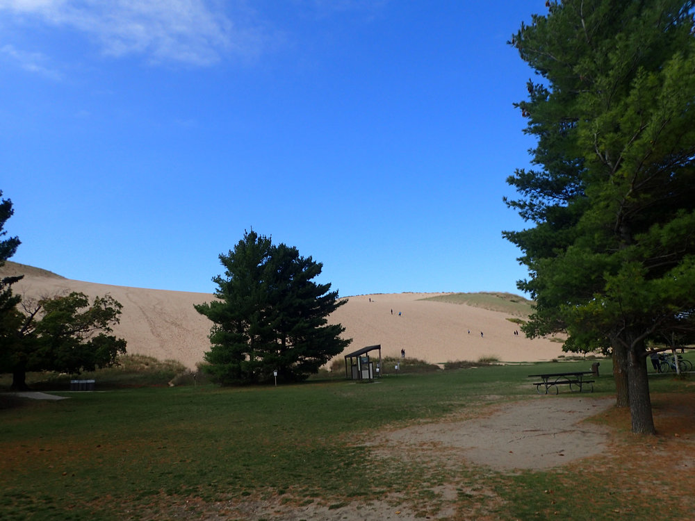 dune from the parking lot.jpg