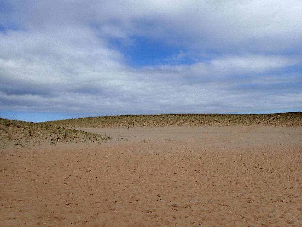 freshwater dunes.jpg