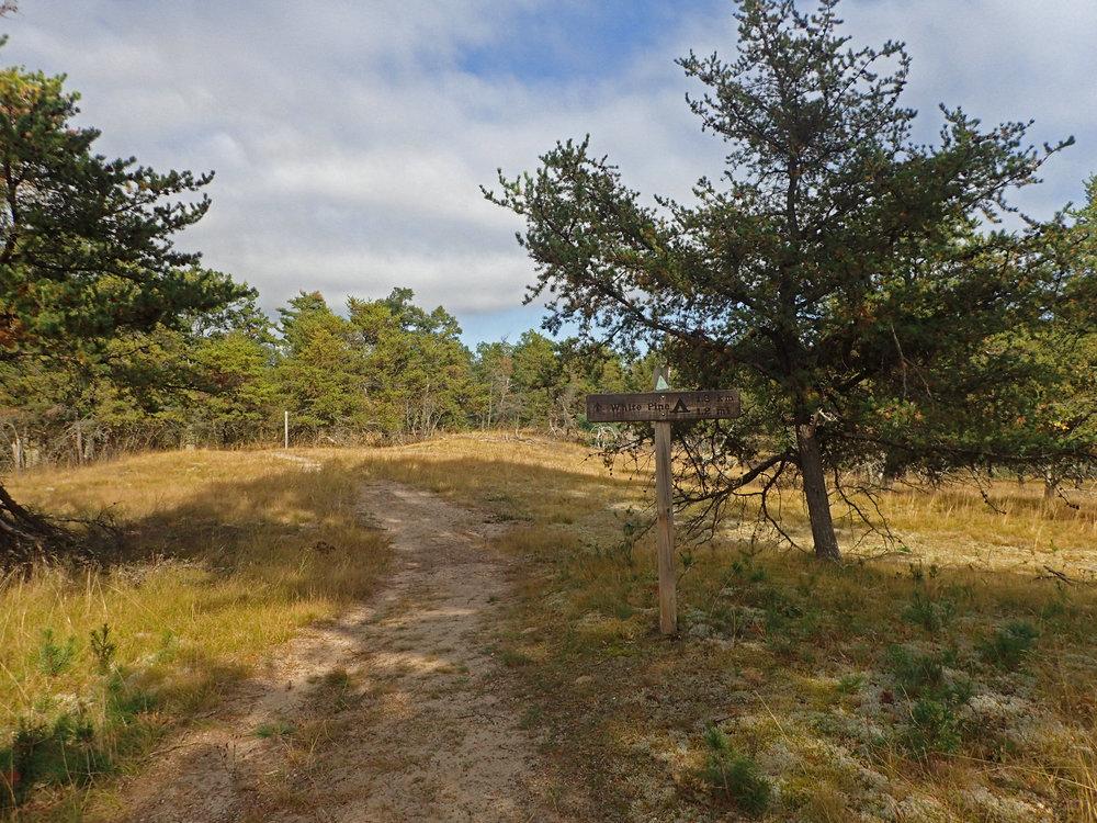 White Pine trailhead.jpg