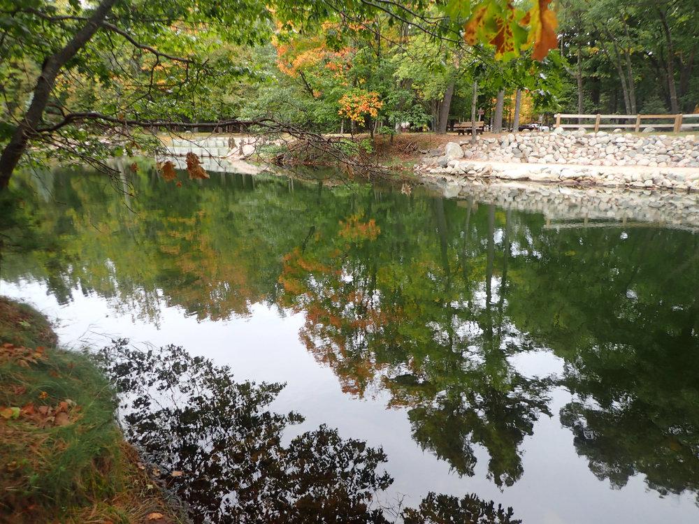 Ludington State Park.jpg