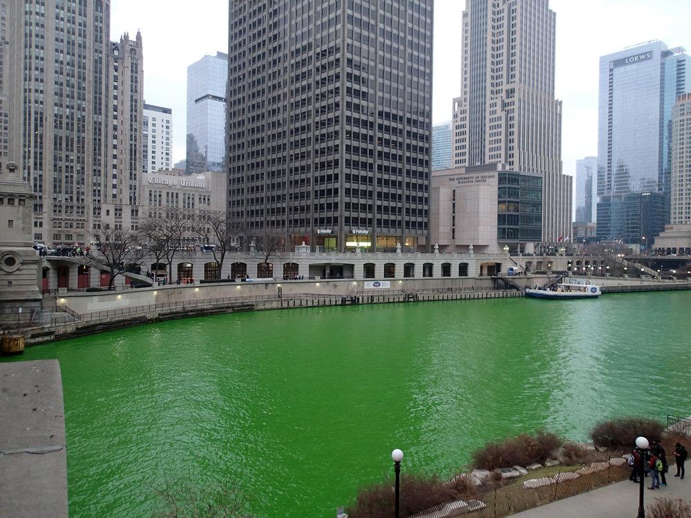 St. Patrick's Day in Chicago.jpg