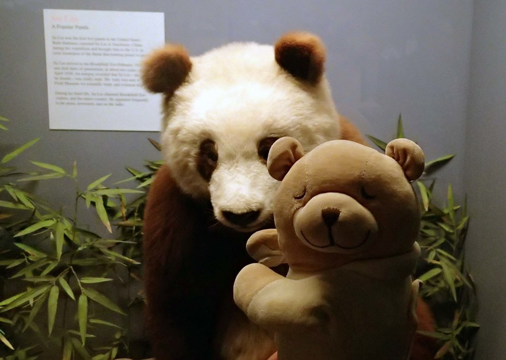 SBJ and panda.jpg