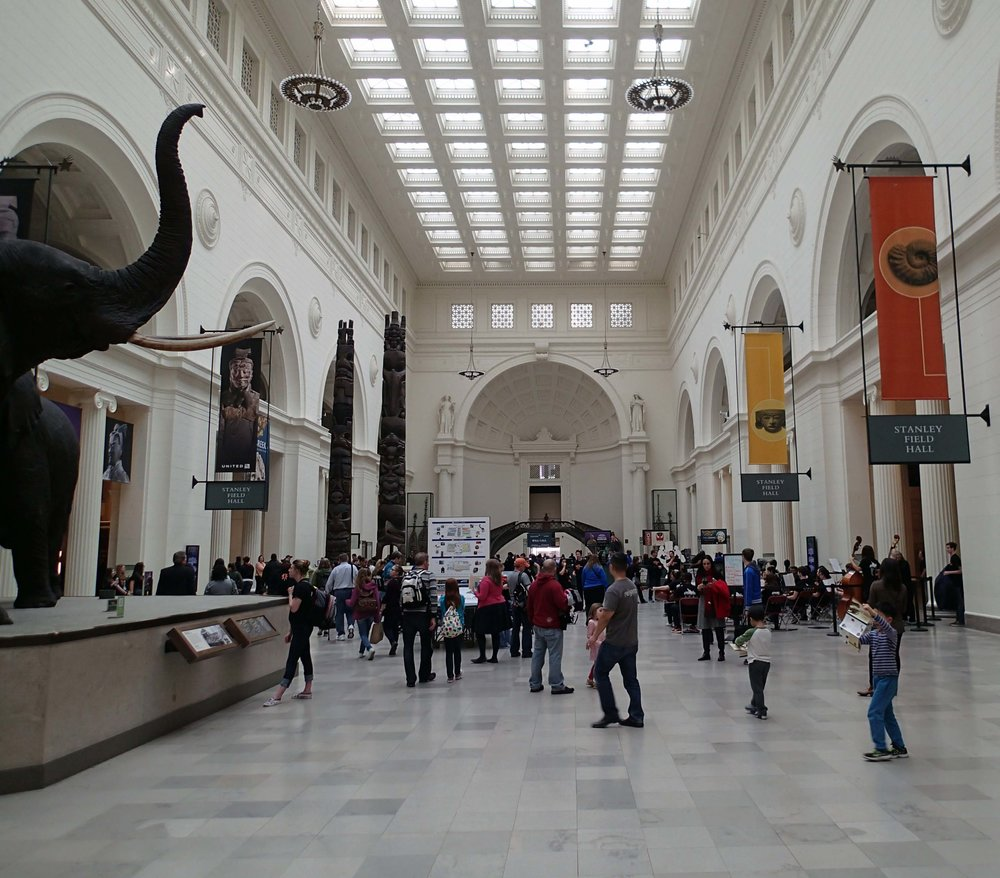 inside the Field Museum.jpg