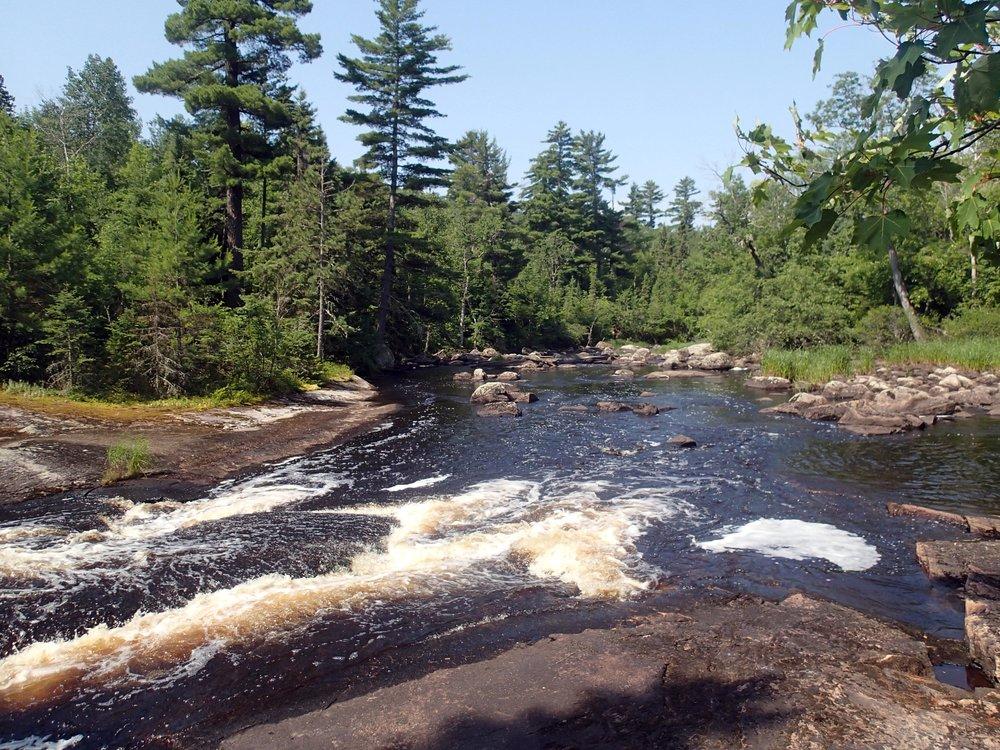mighty Moose River.jpg
