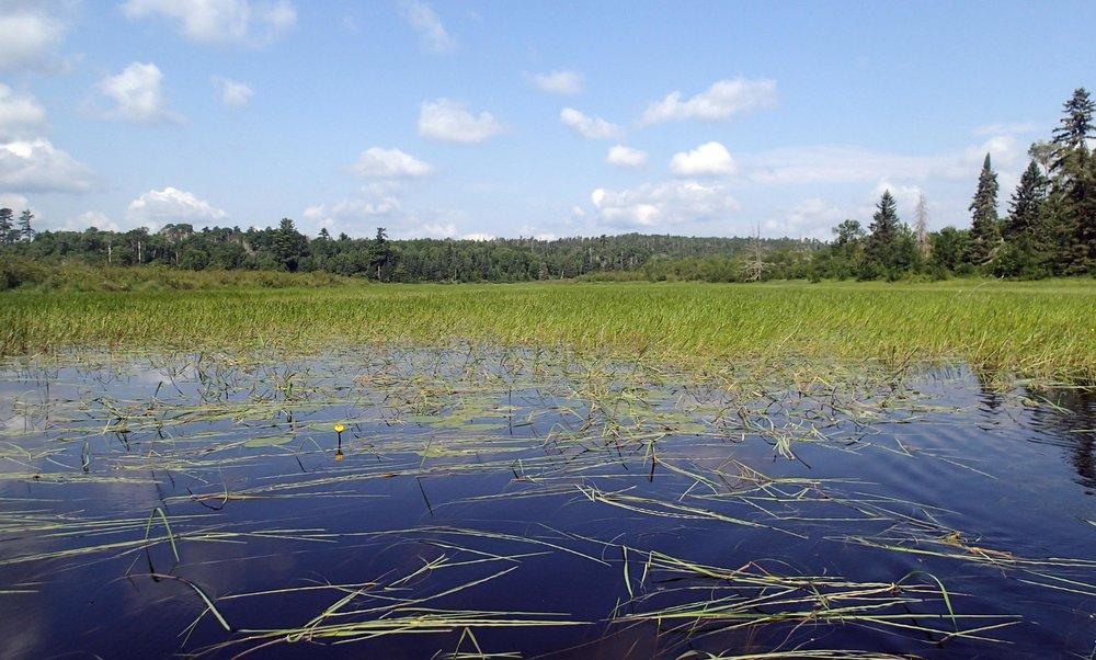 south Agnes lake.jpg