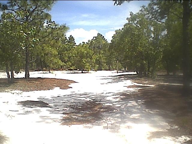 6-15-03 cb state park.JPG