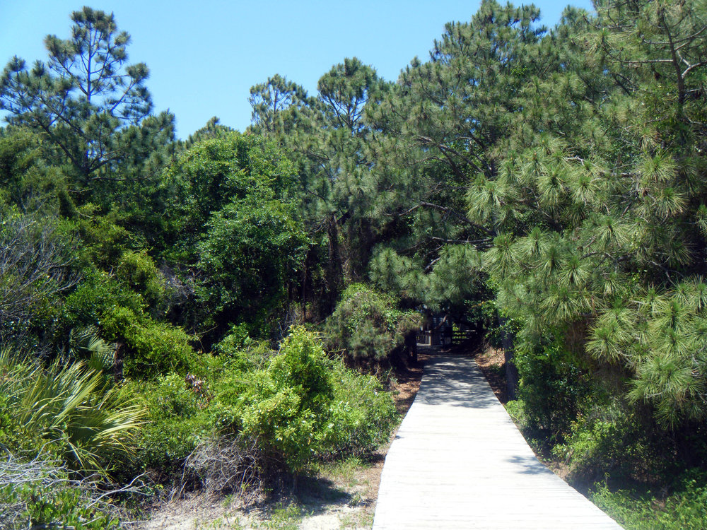 Kiawah Island boardwalk.jpg