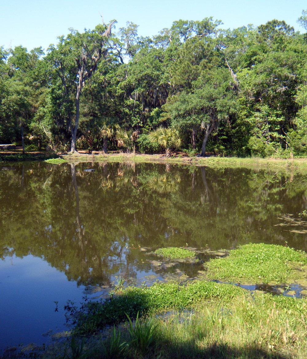 James Island County Park.jpg