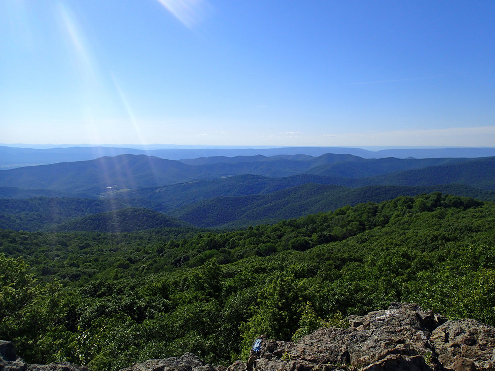 good shot from Bearfence Mountain.jpg
