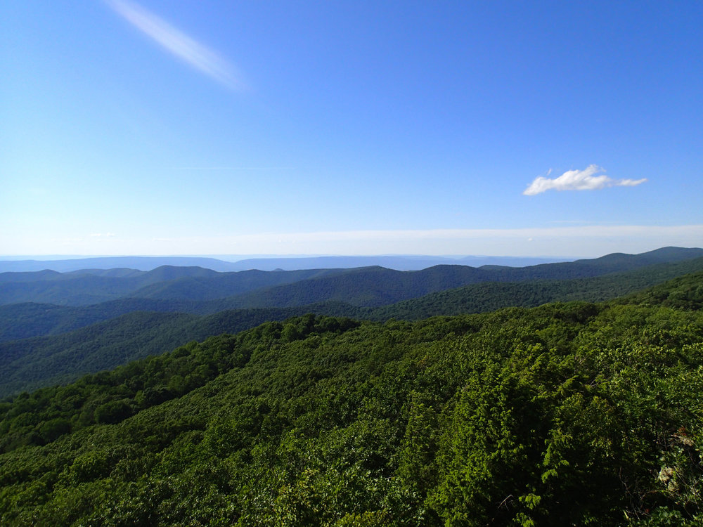 view from Bearfence Mountain.jpg