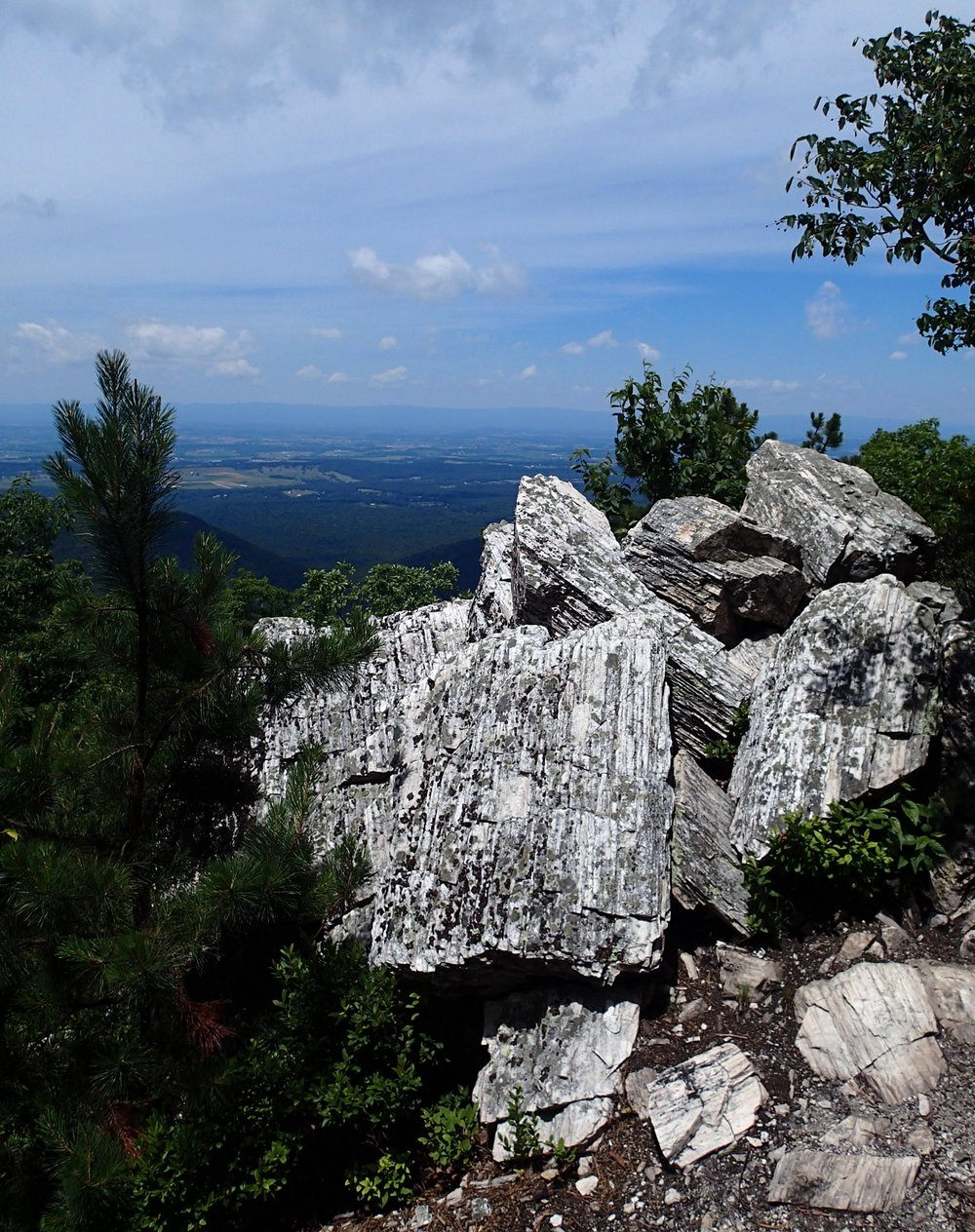 view from Riprap trail.jpg