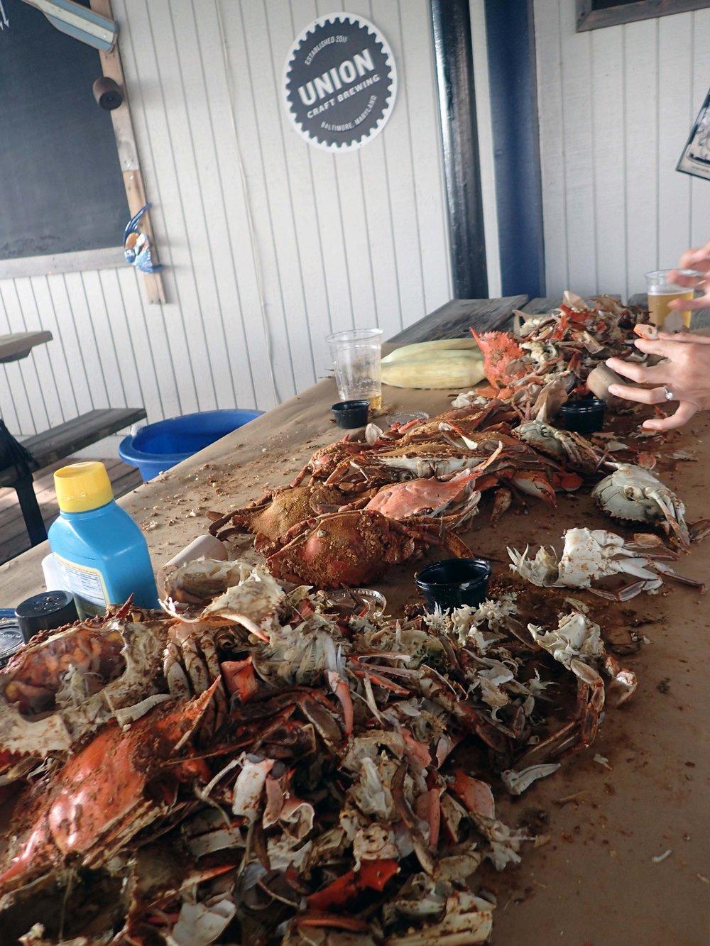 crab carnage.jpg