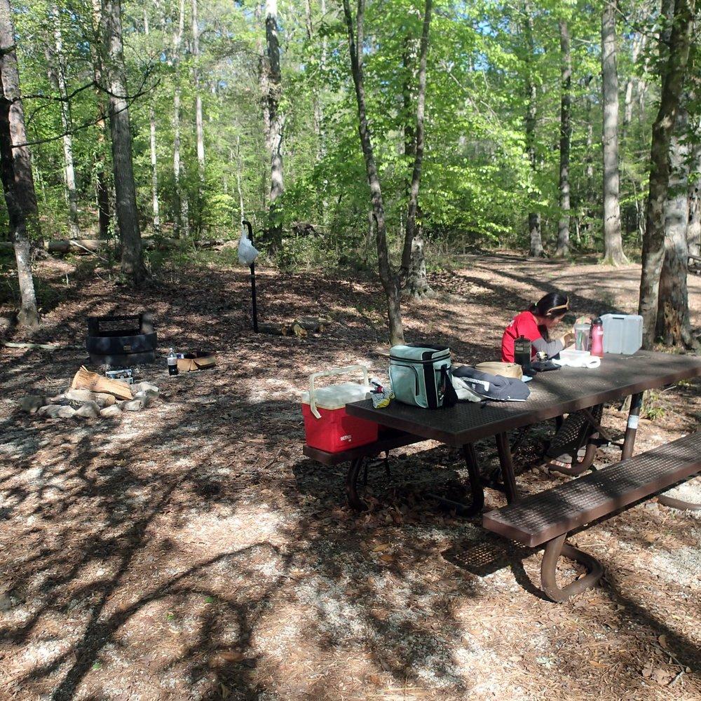 camping at Kisatchie.jpg