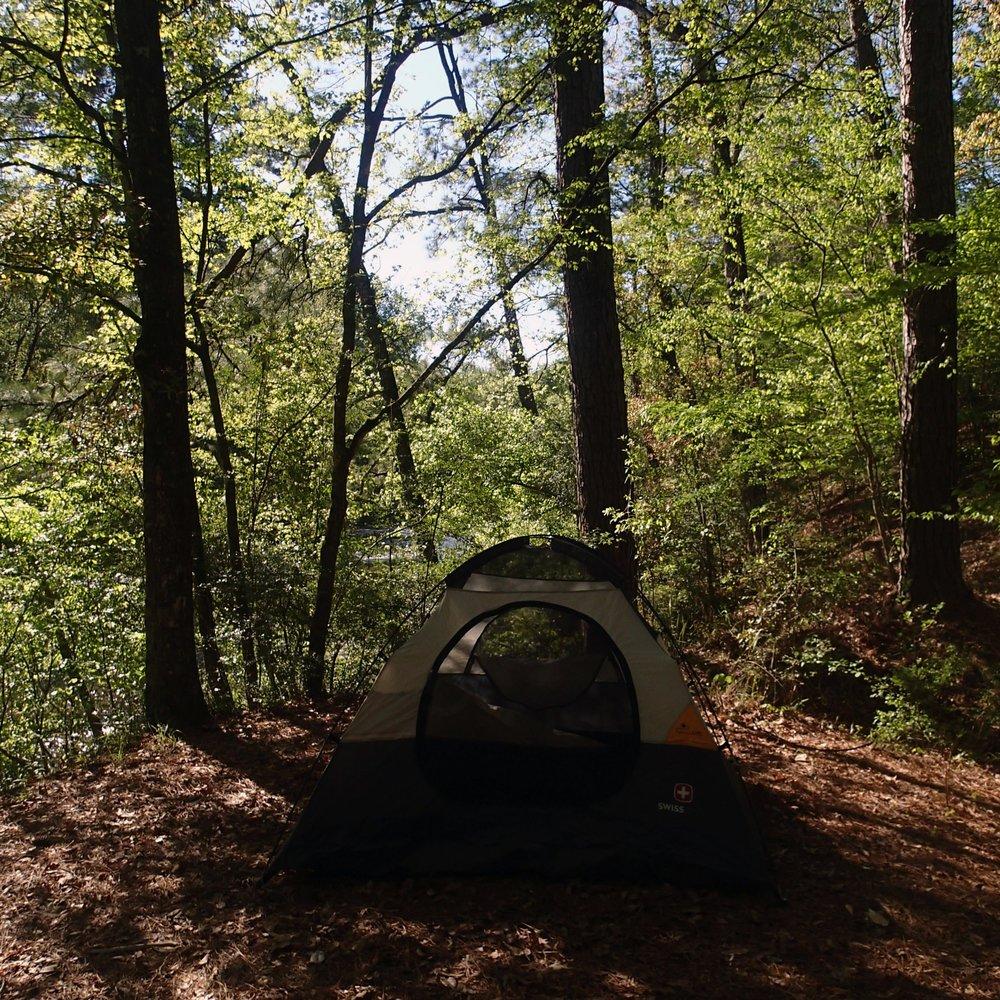 Kisatchie Bayou campground.jpg