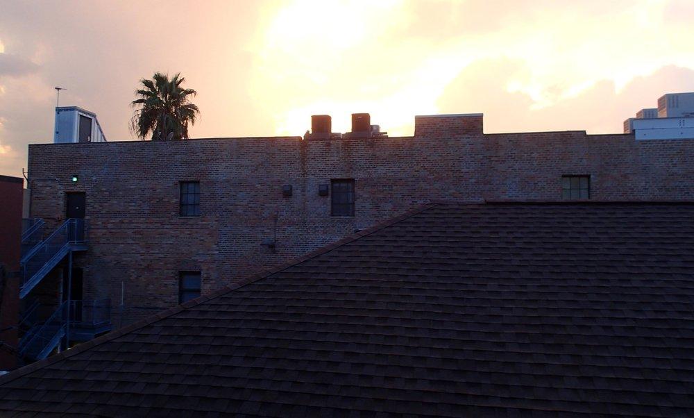 Garden District sunset.jpg