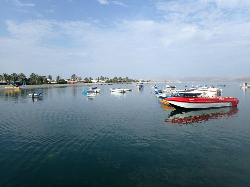 Paracas Peru.jpg