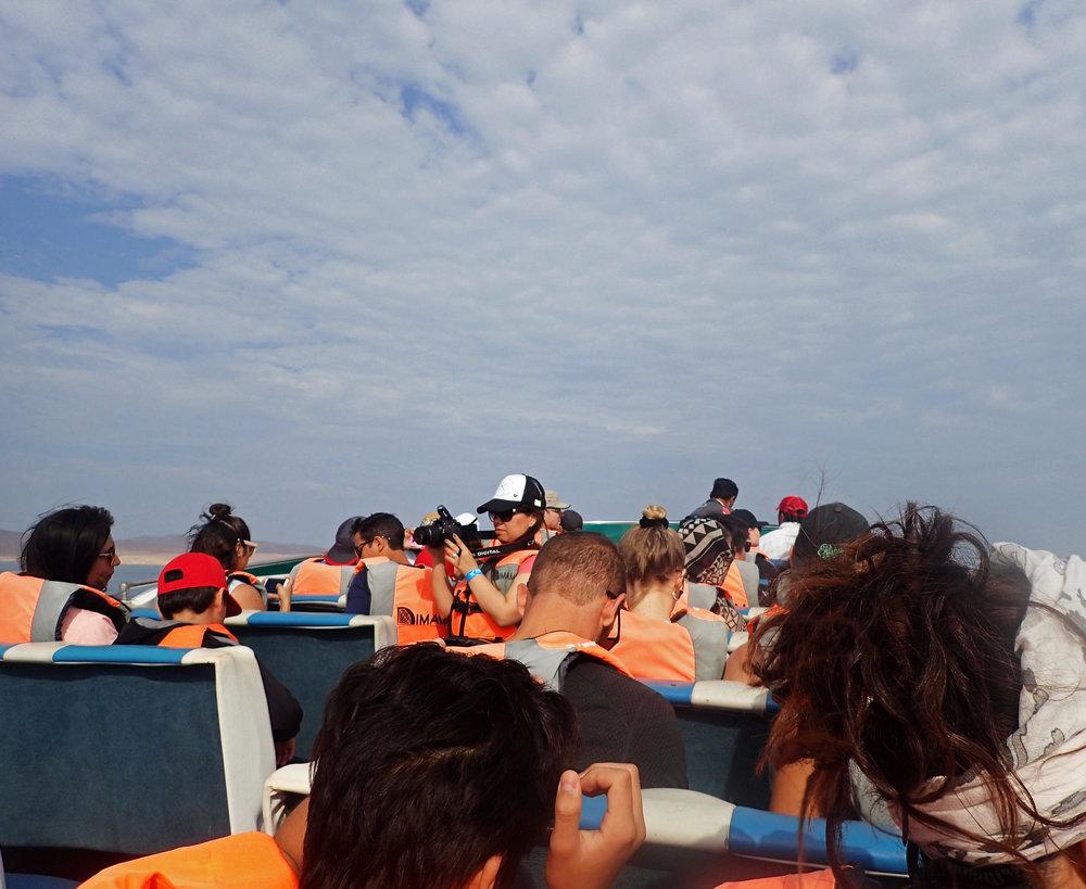 cattle boat.jpg
