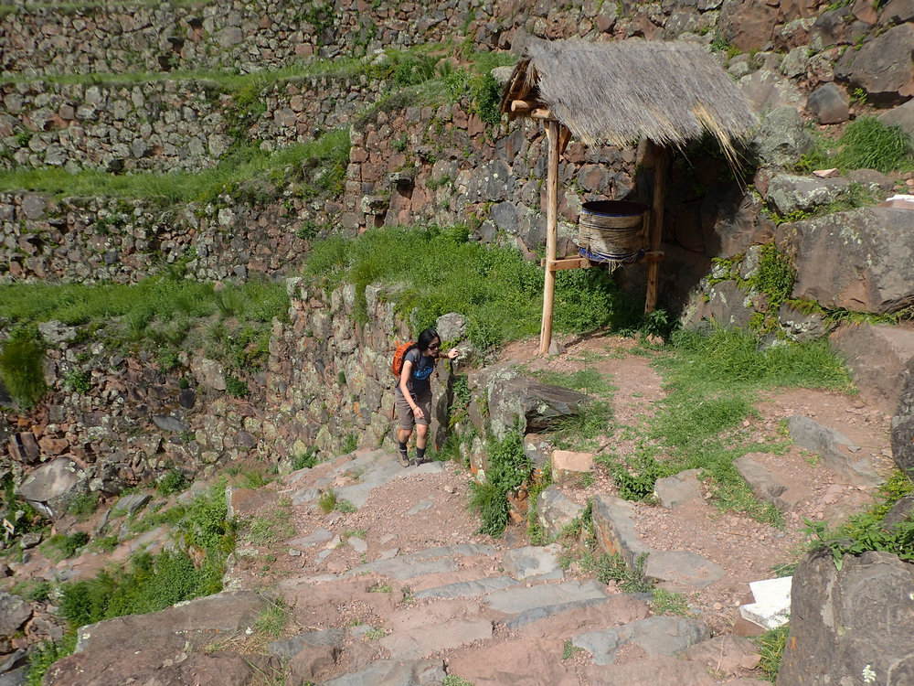 exhausted Ciao in Pisac.jpg