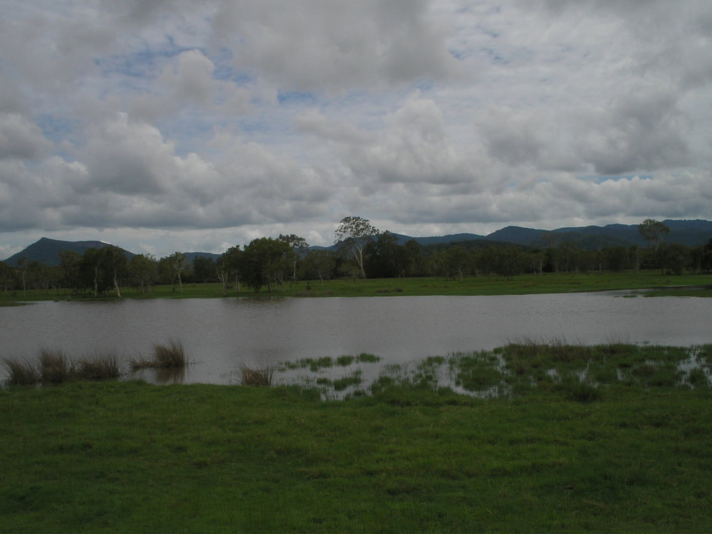 proserpine flood plains.JPG