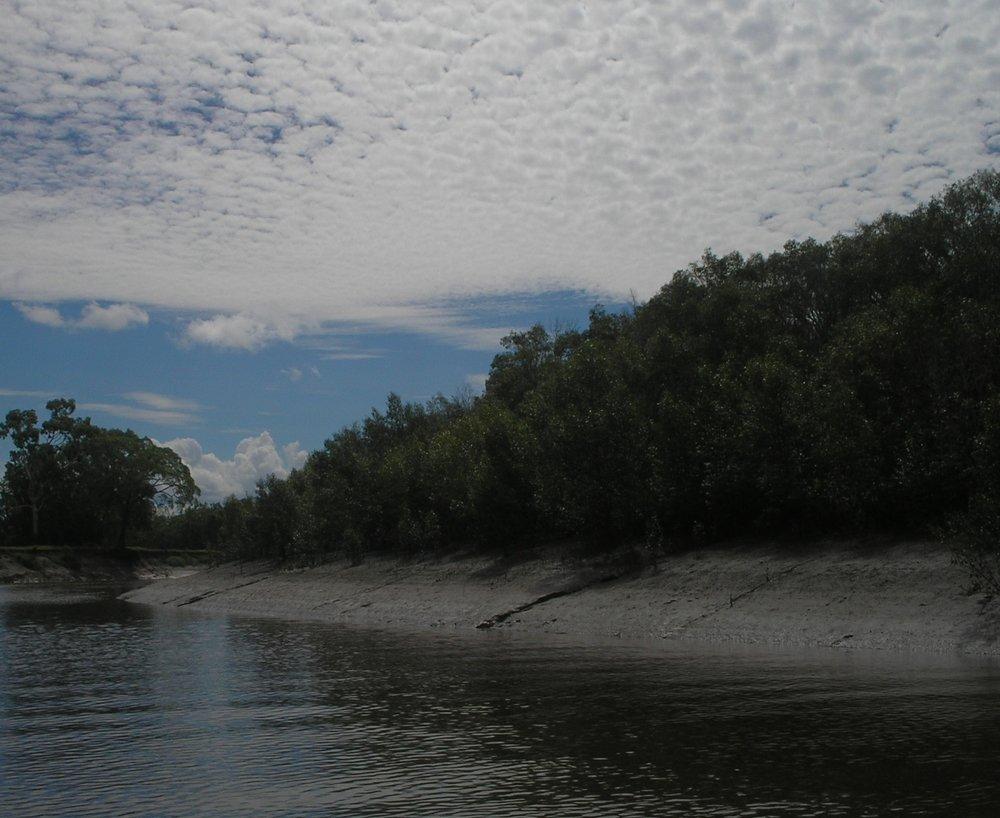 proserpine river 3.JPG