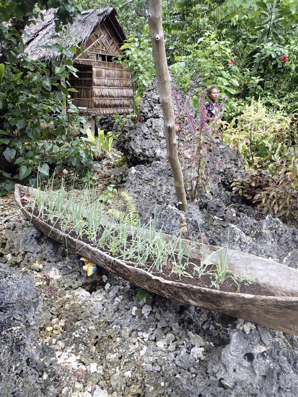 Solomons garden.jpg