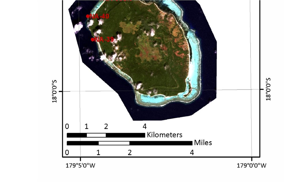 Not sure why the top of the map got cut off, but site 38 (from which all samples were taken) was off the north of the island (see GPS coordinates embedded in colony data files posted below.).