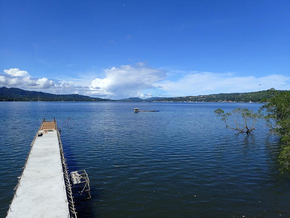 view from marine bio building.jpg