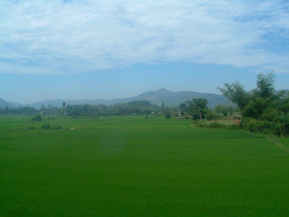 vietnamese countryside.JPG