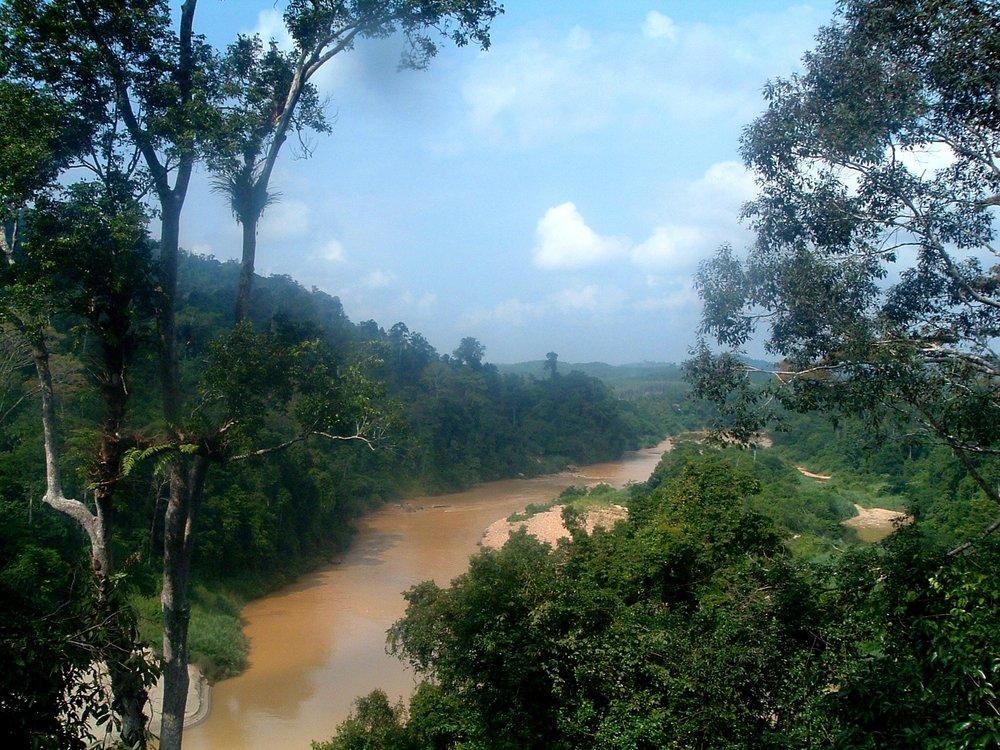 malaysia national park.JPG