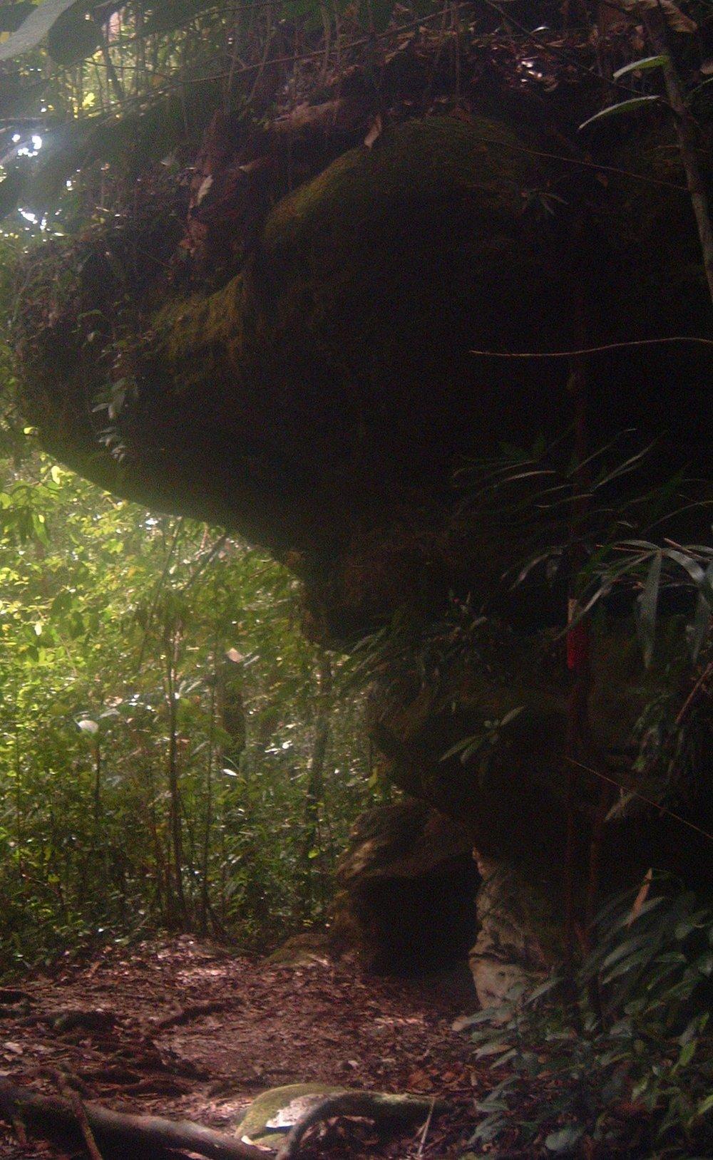 bako national park malaysia.JPG