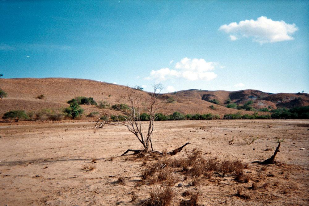 desolate Rinca.jpg