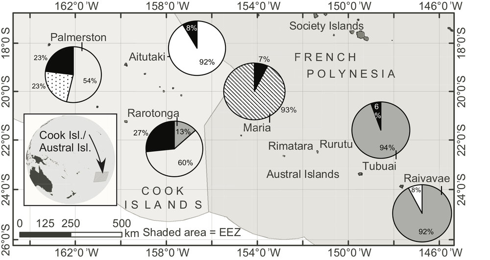 Map showing the breakdown of the pocilloporid coral genotypes in the Austral Islands (right half of map) and Cook Islands (left half):  P. damicornis  (grey),  P. acuta  (white), P . meandrina  (black),  P. verrucosa  (hatched), and Pocillopora species haplotype 8a (dotted). Please see Mayfield et al. ( 2015 ;  Platax ) for details.