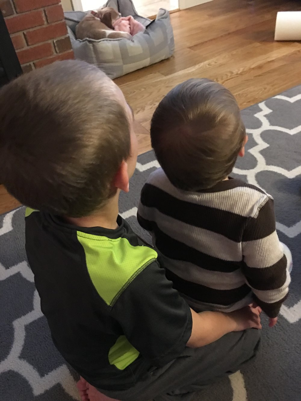nephews.JPG