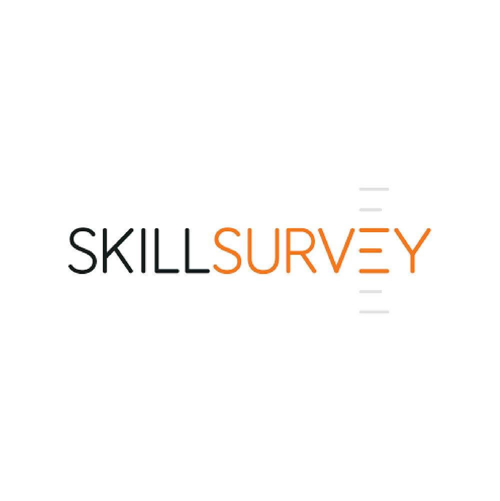 SkillsSurvey.jpg