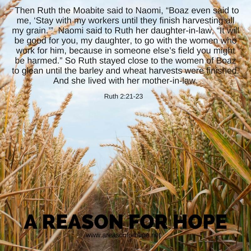 Ruth 2_21-23.jpg