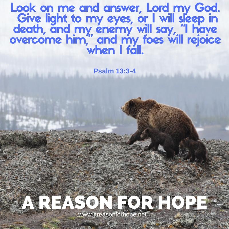 Psalm 13_3-4.jpg
