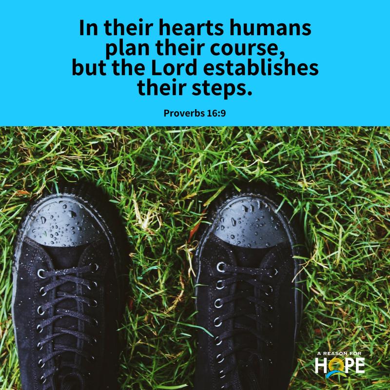 Proverbs 16_9.jpg